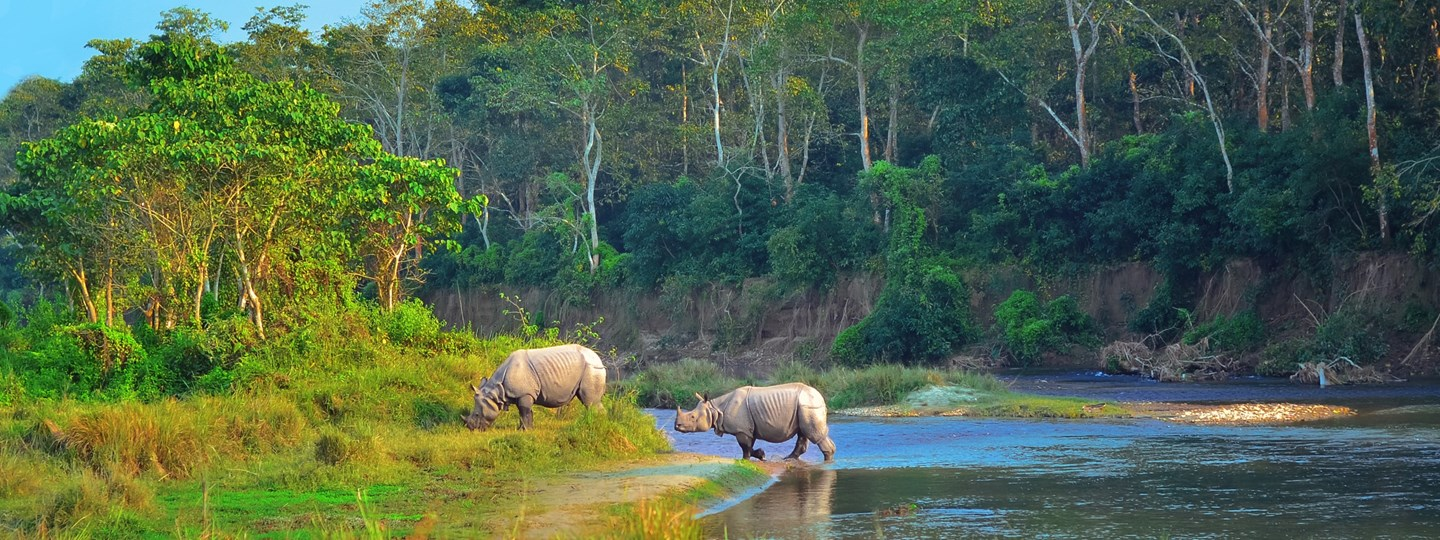 Chitwan Tourist Attractions in Nepal