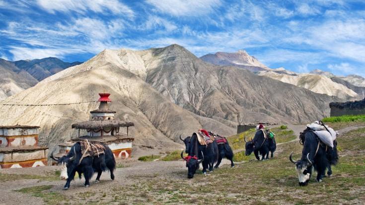 Upper Dolpo Trekking Nepal